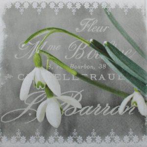 Frokostserviet - 33 x 33 cm - Vintergækker grå-hvid